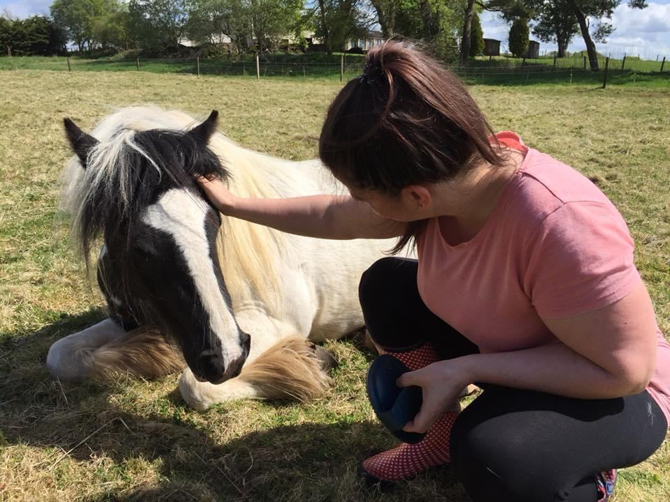 DARCY'S EQUINE ASSISTED LEARNING 06