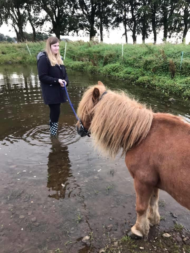 DARCY'S EQUINE ASSISTED LEARNING 07
