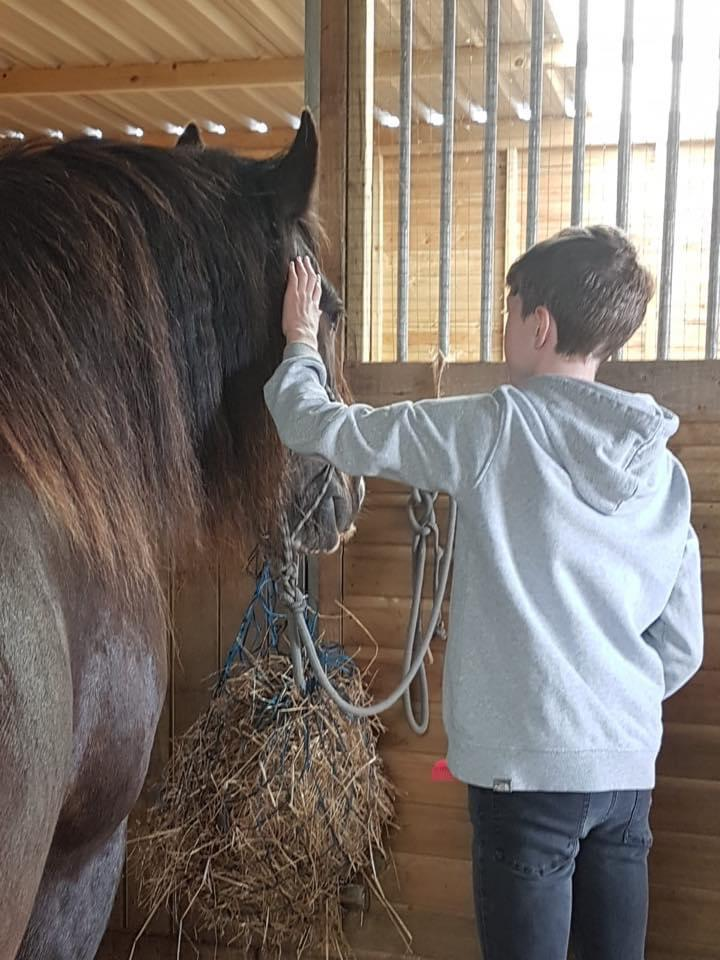 DARCY'S EQUINE ASSISTED LEARNING 08