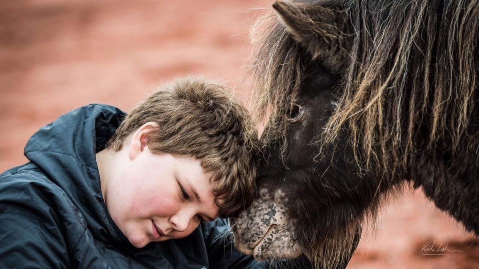DARCY'S EQUINE ASSISTED LEARNING 10