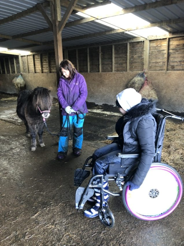 PONY MEETS LEARNER