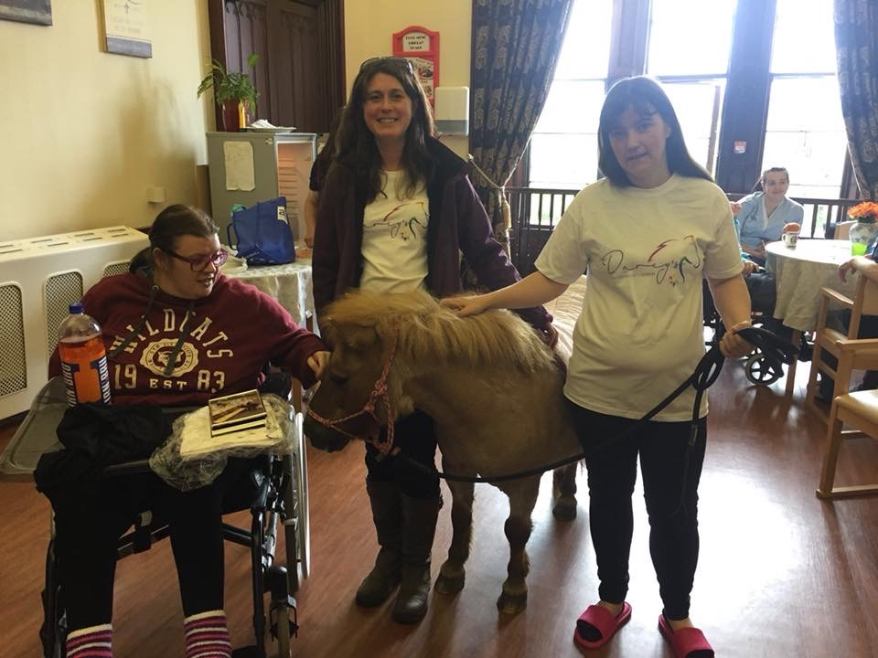 Darcy's Equine Assisted Learning in the Community -2